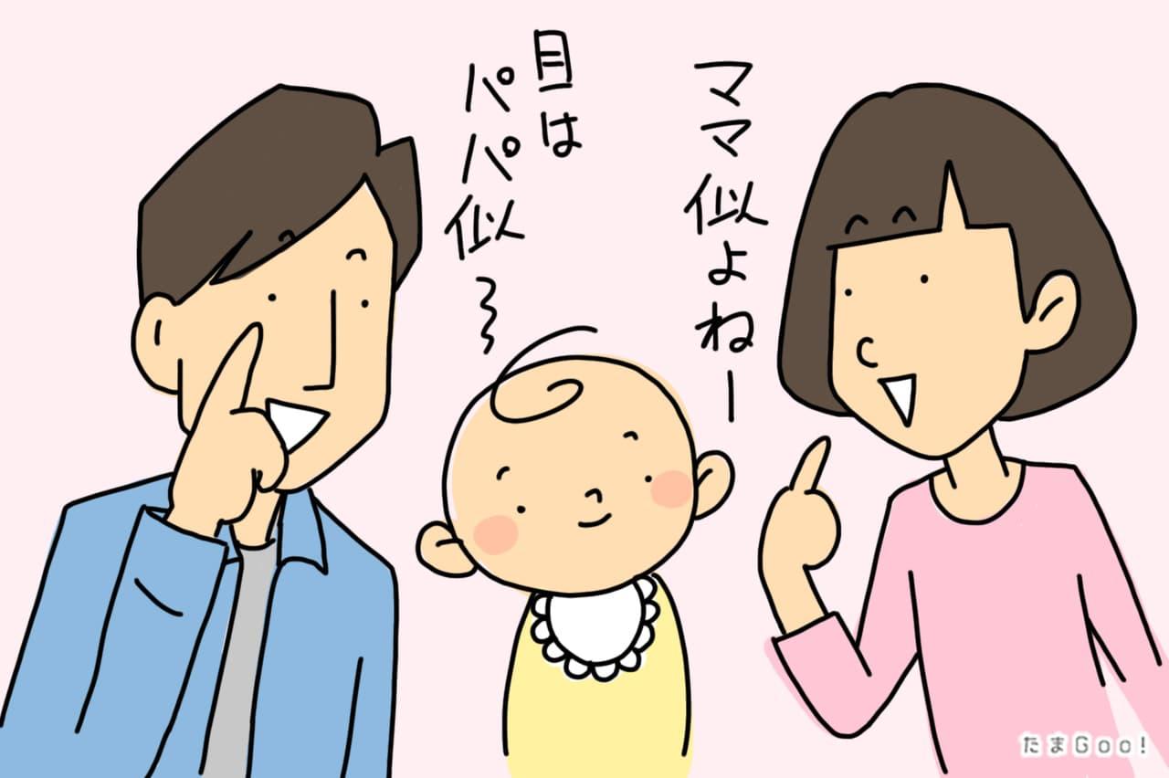 両親のミックス