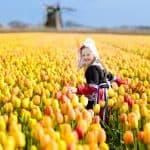 子どもが幸せの国、オランダの幼児教育法「ピラミッドメソッド」!