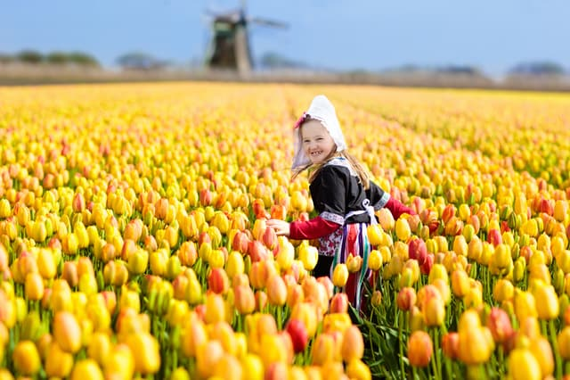 オランダの幼児教育