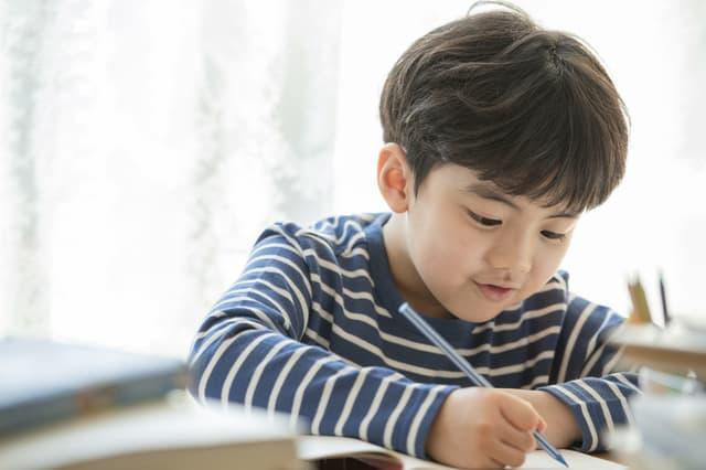 男の子が勉強をしている