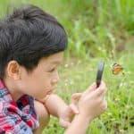 虫好きな子どもは頭がいい理由!あの香川照之も昆虫マニア!