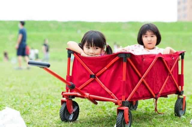 キャリーカートに子どもを乗せる