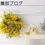 編集部ブログ:ファムケア元年!ユニクロやGUも吸水シート発売!